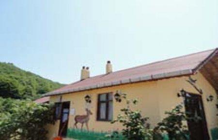 Ağva Teksen Tatil Köyü